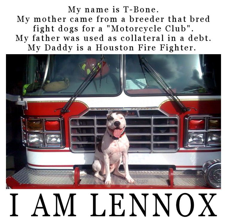 I AM LENNOX